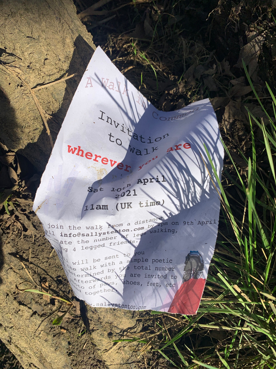 3 Crumpled printed paper on grass and soil