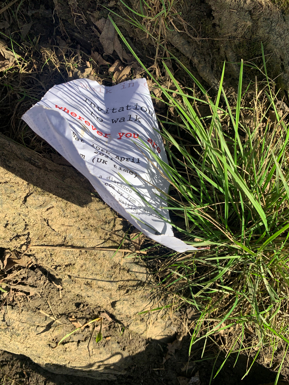 4 Crumpled printed paper on soil