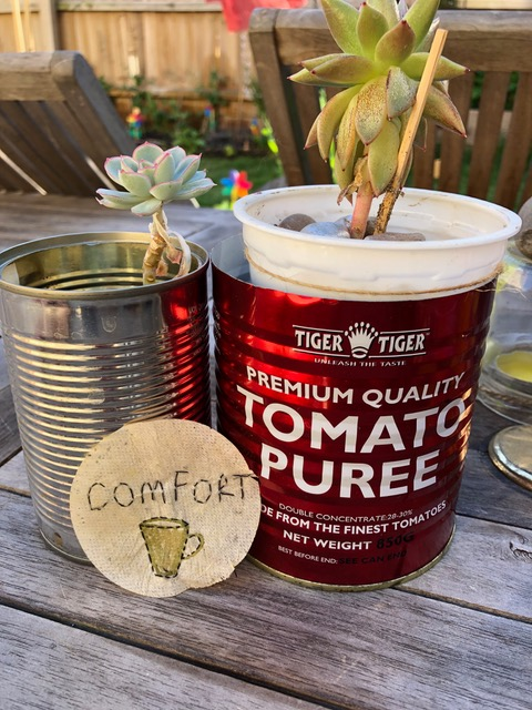 Two flowerpots made from tins with succulents in them. In front of the tins is a round papers shape from a teabag with the word 'comfort' stitched onto it.