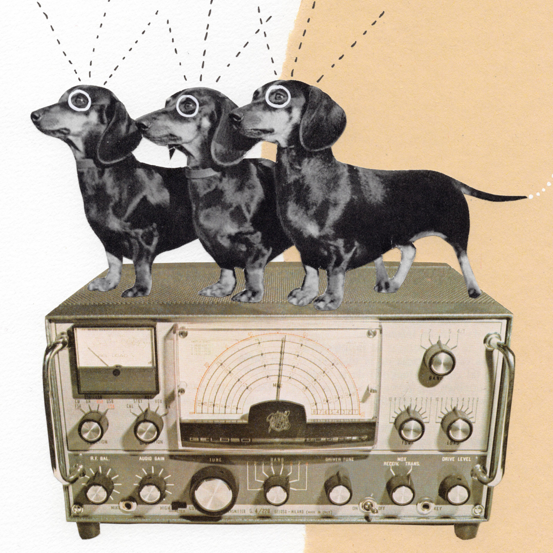 A humerous collage made up of an old telecommunications machine, three sausage dogs and drawn on antennas.