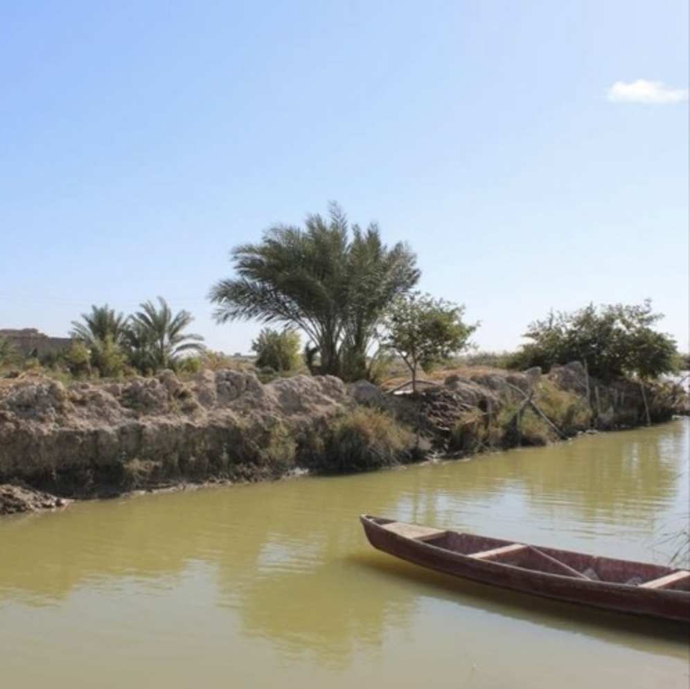A landscape showing a muddy riverbank with palm trees, a muddy coloured river and a small boat.